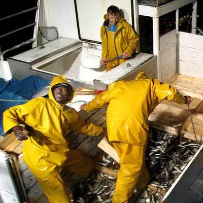 En España existe una gran carencia de marineros. Según el sector, porque  los salarios no compensan la dureza del trabajo.