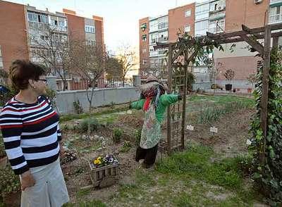 La huerta urbana del barrio del Pilar nació en 2007 y consiguió cambiar la cara a la plaza de Corcubión.
