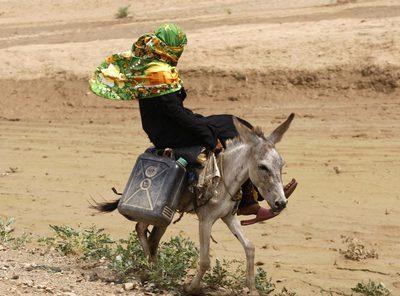Una campesina busca agua a lomos de un burro en una zona desértica de Yemen, país azotado por la sequía.
