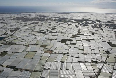 La producción de las 26.500 hectáreas de invernadero de Almería mejoraría con la inyección de dióxido de carbono bajo plástico, como ya realizan las empresas punteras.