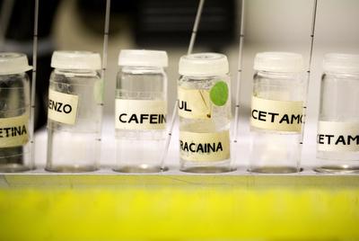 Laboratorio del colectivo Energy Control en Barcelona, donde se analizan muestras de drogas de síntesis.