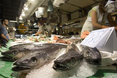 Los científicos confirman un descenso de contaminantes como el plomo en el ambiente. Preocupan más el pescado y el marisco porque las concentraciones de compuestos no bajan.