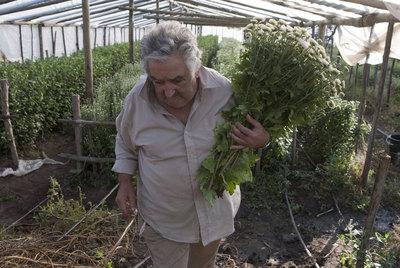 El presidente de Uruguay, José Mujica, en su chacra (casa agrícola) de Montevideo, durante la entrevista concedida a EL PAÍS el  13 de abril de 2011.
