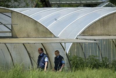 Los guardas de seguridad pasean entre los brotes de la granja alemana investiagada, Der Gärtnerhof.