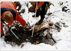 Ötzi, 'el hombre del hielo'
