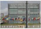 Banderas a media asta en contra del ERE en el centro Príncipe Felipe