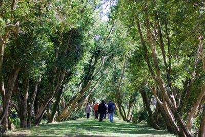 El paseo de Os Buxos, en la isla de San Simónen, en la ría de Vigo.