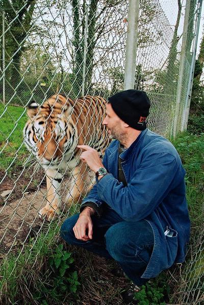 Benjamin Mee , saluda a 'Vladimir', un imponente tigre de Amur.