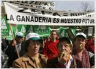 Miles de agricultores exigen al Gobierno una defensa firme de los intereses del sector