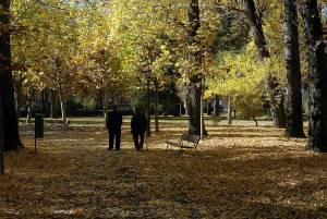 Dos ancianos pasean por un parque. EFEArchivo