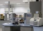 Logroño fabrica el 'plástico del futuro'