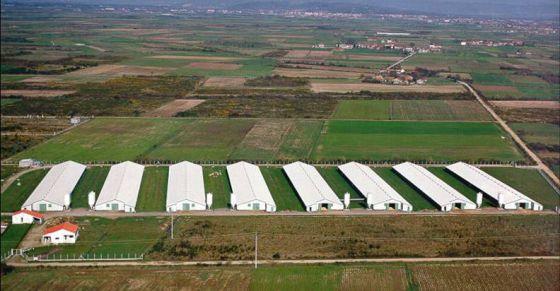 Instalaciones de Coren en la provincia de Ourense.