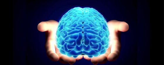 El cerebro que habla con sus clientes