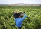 España lidera la exportación mundial de vino, pero vende barato