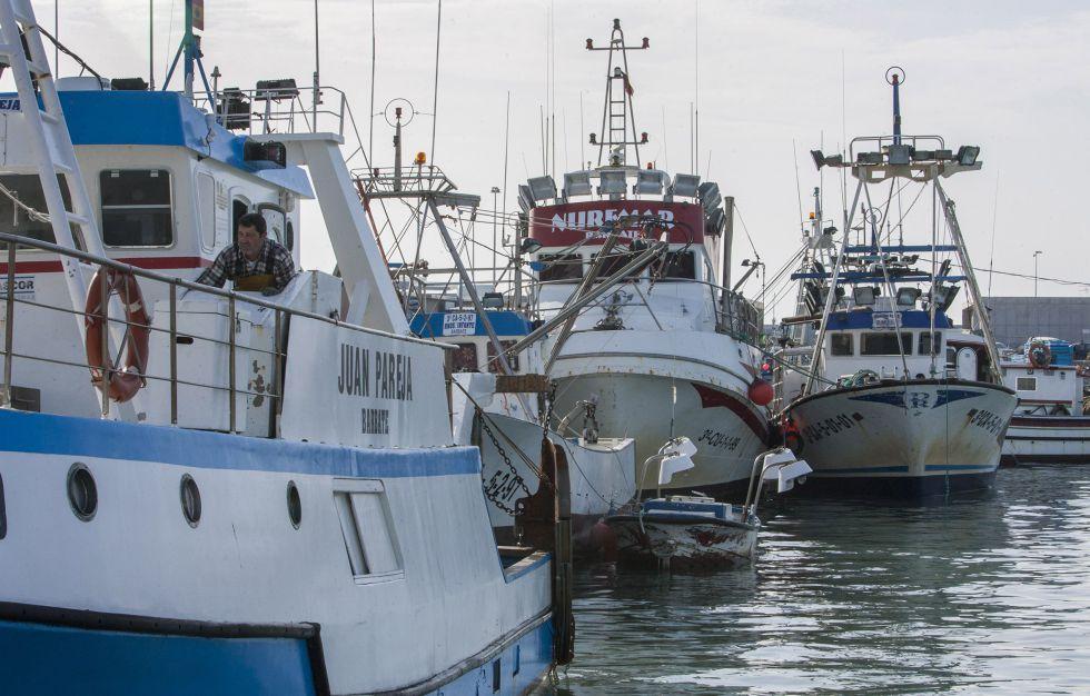 Barcos de pesca en Cádiz