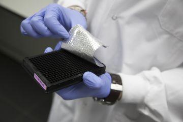 Una empresa española mide cuántos años tienen realmente sus células