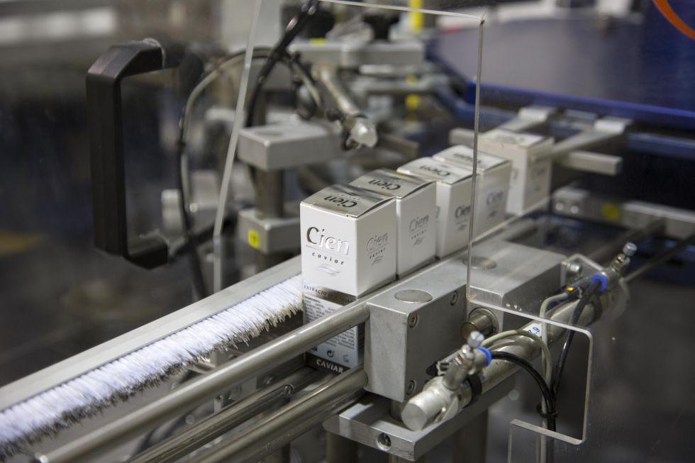 Planta de Sanase, fabricante de varias cremas de la marca Cien para Lidl, en Alcoy.