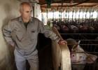 Los granjeros se ahogan en la burbuja del cerdo