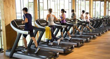 La empresa es proveedora de hoteles, clubes y de máquinas para rehabilitación en hospitales.
