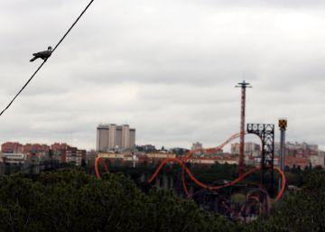 Parques Reunidos repartirá en dividendos un 30% de sus beneficios