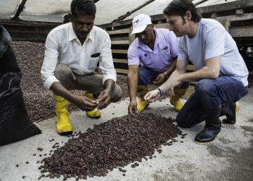 Chocolates con ecosistema propio