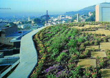 Ponga un jardín en el tejado