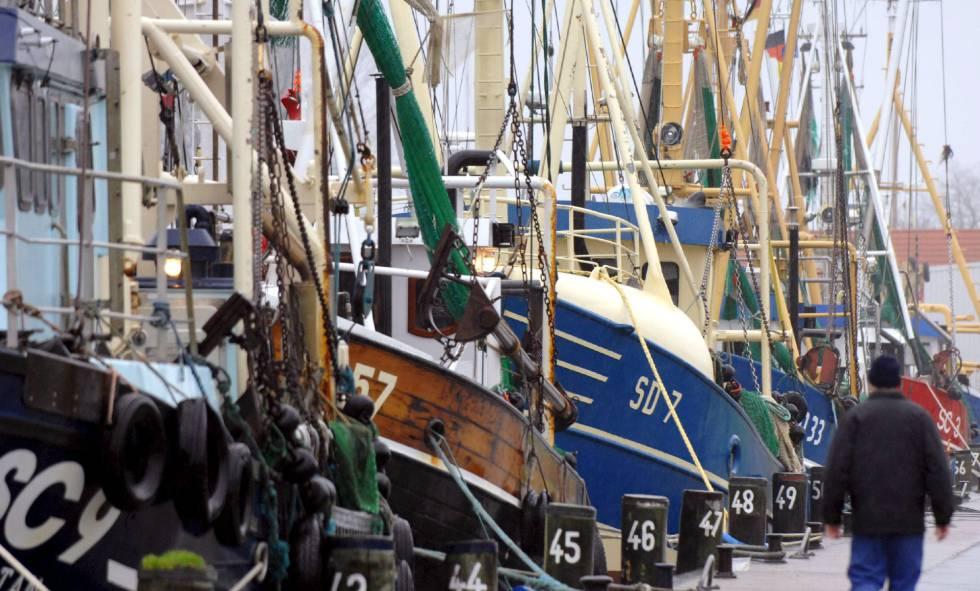 Embarcaciones pesqueras en el puerto de Buesum (Alemania).