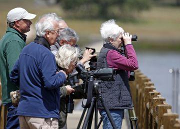La llegada de turistas a España crece más del 11% en abril