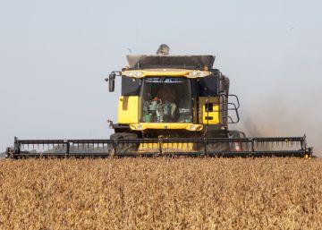 Argentina pone fin al conflicto con Monsanto por el control de la soja transgénica