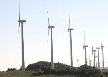 Forestalia busca socios para financiar sus plantas eólicas