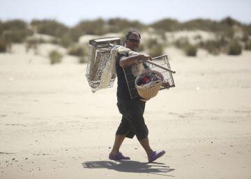 Coquineros de Doñana: de la ilegalidad al supermercado