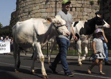 Cambio de ciclo en el sector lácteo