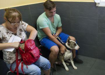 El Congreso pide rebajar IVA de los servicios veterinarios del 21 al 10 %
