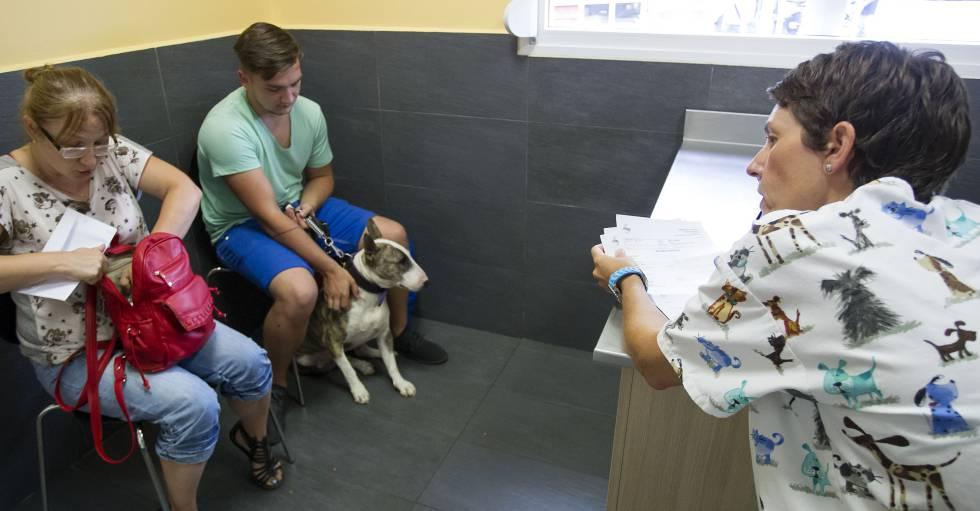 Clínica veterinaria en Málaga.