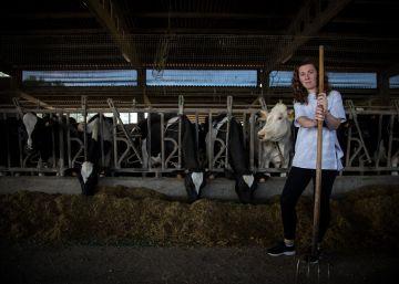 La odisea de montar una vaquería en plena crisis láctea
