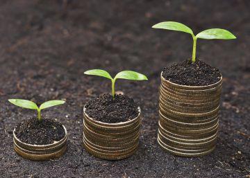 Cómo emprender en 'verde': seis historias de negocios sostenibles