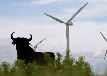 """La marca """"toro"""" puede ser usada libremente """"porque no es un símbolo oficial de España"""""""