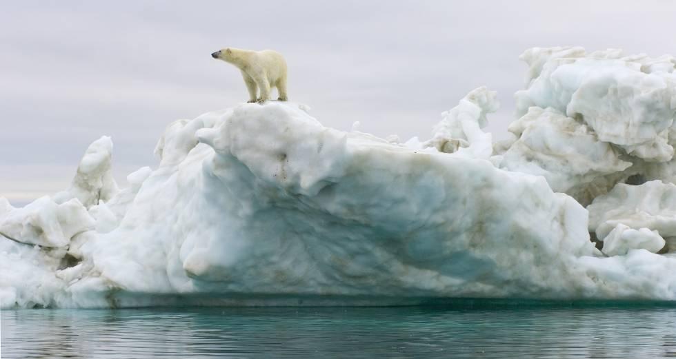 La temperatura del planeta se incrementa con el cambio climático en dos grados cada siglo.