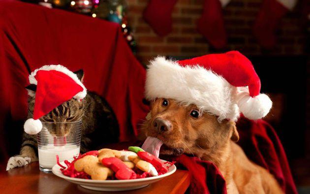 Navidad sin cocinar