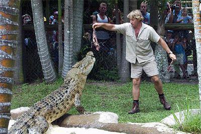 Steve Irvin alimenta a un cocodrilo durante una exhibición en febrero de 2002.