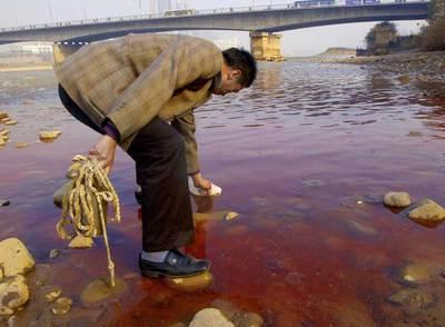 Un miembro del departamento local para la protección del medioambiente recoge agua del río Amarillo.