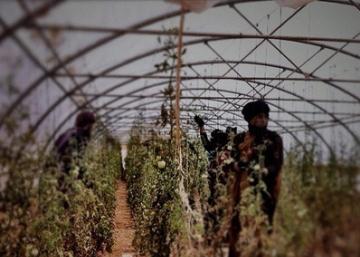 La crisis también llega a los campamentos de refugiados del Sáhara