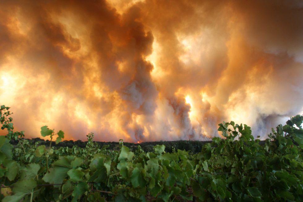 El gran incendio de La Jonquera (Girona) avanza con extrema violencia en direccion sur.