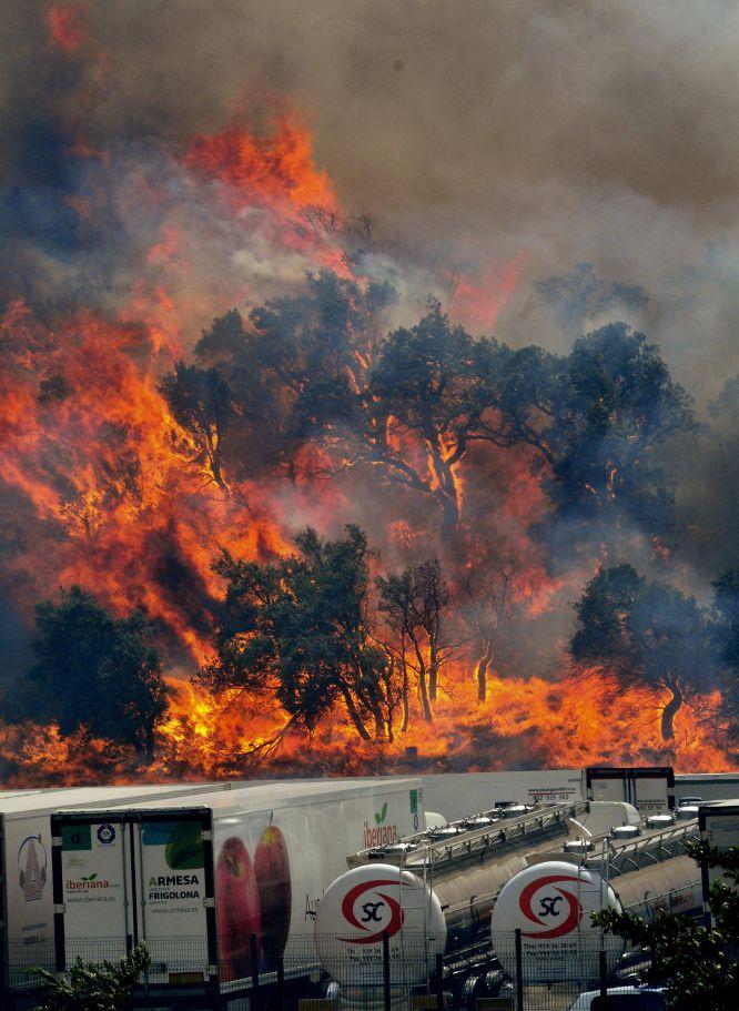 Las llamas del incendio forestal que se ha declarado hacia las 13 horas en La Jonquera (Girona) devoran los árboles próximos a la aduana de localidad gerundense.