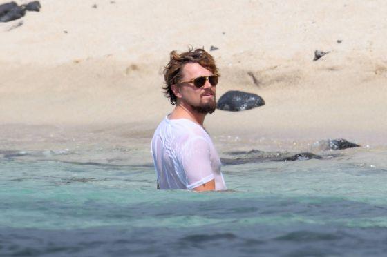 Leonardo DiCaprio, solidario hasta con las ballenas 1350995258_604740_1351001255_noticia_normal