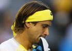 Ruthless Djokovic steamrolls Ferrer