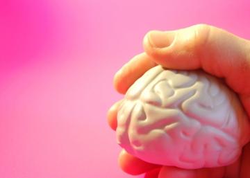 Nuestro cerebro es plástico