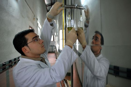 Quality control at an oilve oil plant in Jaén.