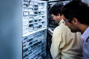 Mantener la cadena de frío es esencial para conservar las muestras en las condiciones debidas y garantizar la fiabilidad y la calidad de los estudios.