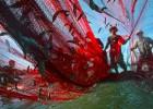 Pesca en aguas profundas: cuando la ciencia tiene qué decir